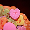 Say Yes by Susan Herber