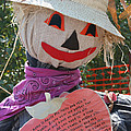 Scarecrow Andy by Susan Herber