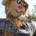 Scarecrow Farmer by Susan Herber