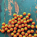 Scattered Tangerines by Sarah Palmer
