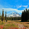 Scenic Mt. Hood In Oregon by Athena Mckinzie