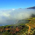 Scenic Pacific Coast by Caroline Stella