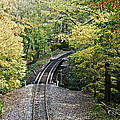 Scenic Railway Tracks by Susan Leggett