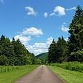 Scenic Road by Jeanette Oberholtzer