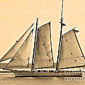 Scenic Schooner - Sepia by Al Powell Photography USA