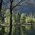 Scenic View Of The Merced River by Marc Moritsch