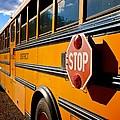 School Bus by Eric Tressler