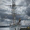 Schooner In Halifax Harbor by Randall Nyhof