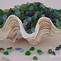 Sea Glass In Clam Shell - No 1 by Mary Deal