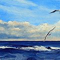 Sea Gulls by Robert Harvey