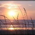 Sea Oats Beach Sunrise by Mike Moore