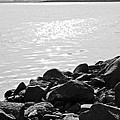 Sea Of Galilee In Black And White by Anthony Doudt