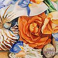 Sea Petals by Catherine Moore