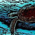 Sea Turtle Swimming by George Pedro