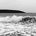 Sea Wave by Svetlana Sewell