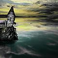 Seagull Island by Gray  Artus