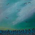 Seagulls by Marilyn Ferguson