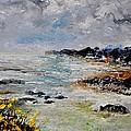 Seascape 452160 by Pol Ledent