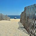seashore 100 Cape Henlopen Beach walkway by Terri Winkler