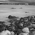 Seashore by Eunice Gibb