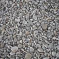 Seashore Rocks by Ted Kinsman