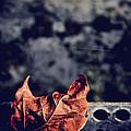 Season Of Fire by Odd Jeppesen