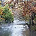 Seasons Change by Bill Cannon