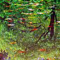 Seasons Reflect by Karol Livote