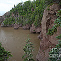 Seastacks At Hopewell Rocks by Ted Kinsman