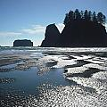 Seastacks At Second Beach La Push by Kelly Manning