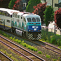 Seattle Sounder Train by Randy Harris