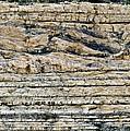Sedimentary Rock Slumping by Dirk Wiersma