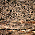 Sedimentary Structures In Sand Beds by Dirk Wiersma