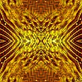 Seeding Mandala by Richard Jones