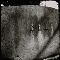 Self by Sharon Kalstek-Coty