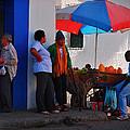 Senor Papaya by Skip Hunt