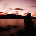Sentinel Of Mono Lake by La Rae  Roberts