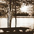 Sepia Picnic Table by Kathy Sampson
