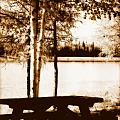 Sepia Picnic Table Lll by Kathy Sampson