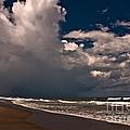 September Beach by Susanne Van Hulst