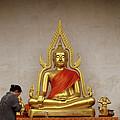 Serene Buddha by Shaun Higson