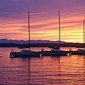 Serene Sunset by Michael Merry