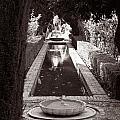 Serenity In Sepia by Lorraine Devon Wilke