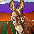 Serious Donkey by Phil Dynan