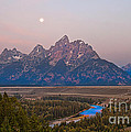 Setting Moon by Robert Bales
