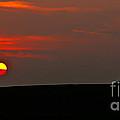Setting Sun by Robert Bales