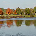 Seven Lakes State Park Mi by Margrit Schlatter