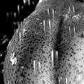 Sexy Pear Taking Shower by Igor Kislev