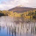 Sgurr Na Lapaich From Loch Salach A Ghiubhais In Glen Affric by Howard Kennedy