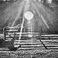 Shadow by Darrin Doss